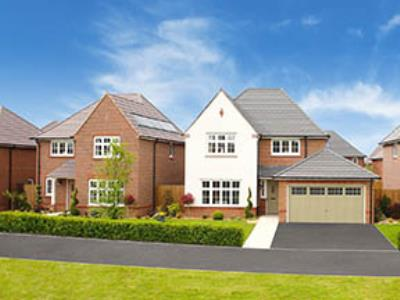 Tabley Green-43059-Search