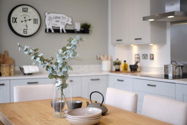 FrenchayGardens-Lancaster-Kitchen-46581