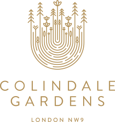 collingdale-logo-dev-gold