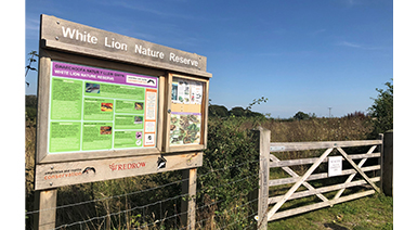 Redrow Building Responsibly - White Lion Nature Reserve pic article in image